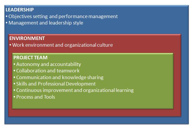 Agile Leadership Model | Analytical Mind